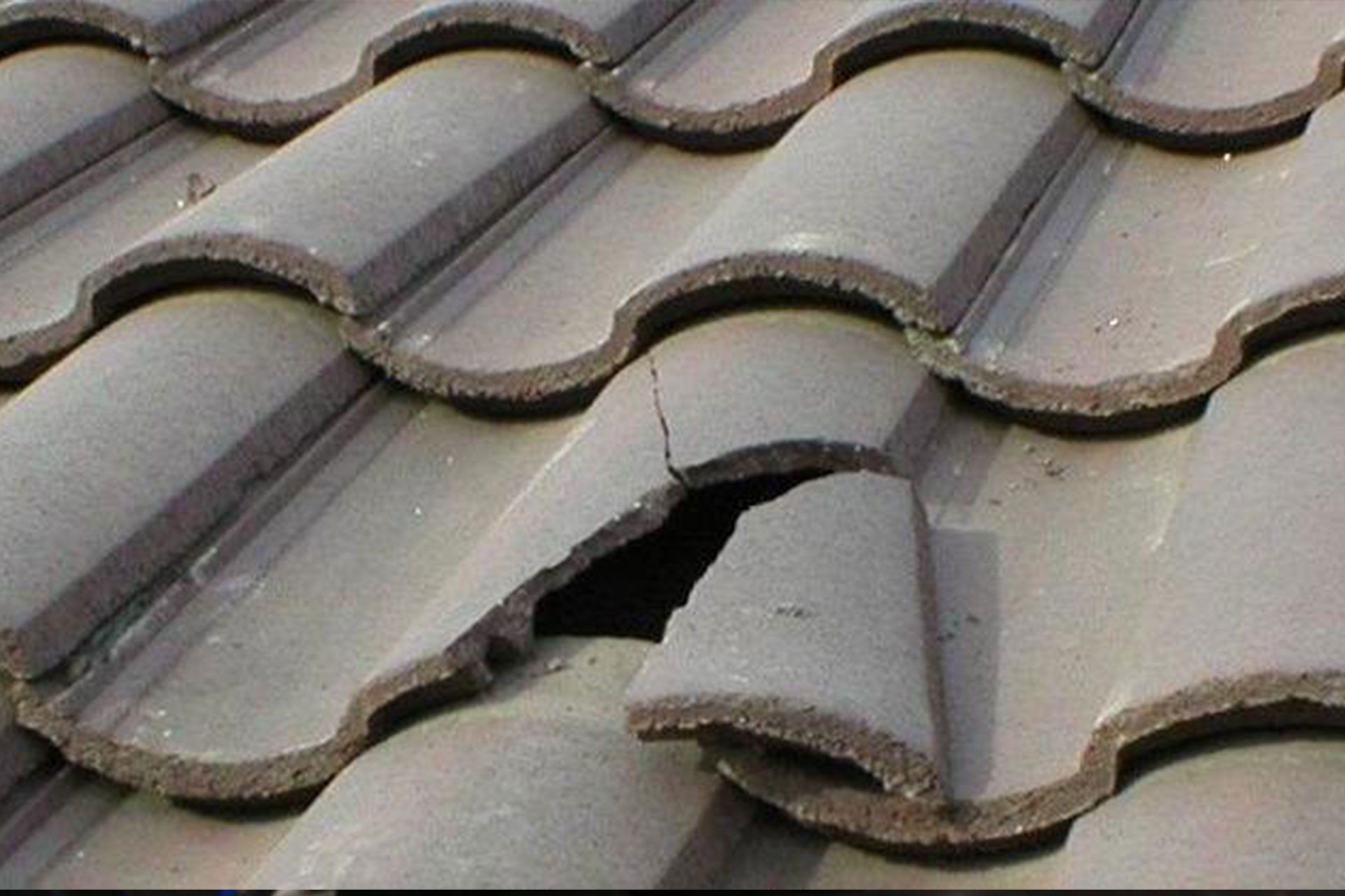 Roof leak repair Auckland